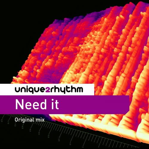 Unique2rhythm - Need It - Original Mixes